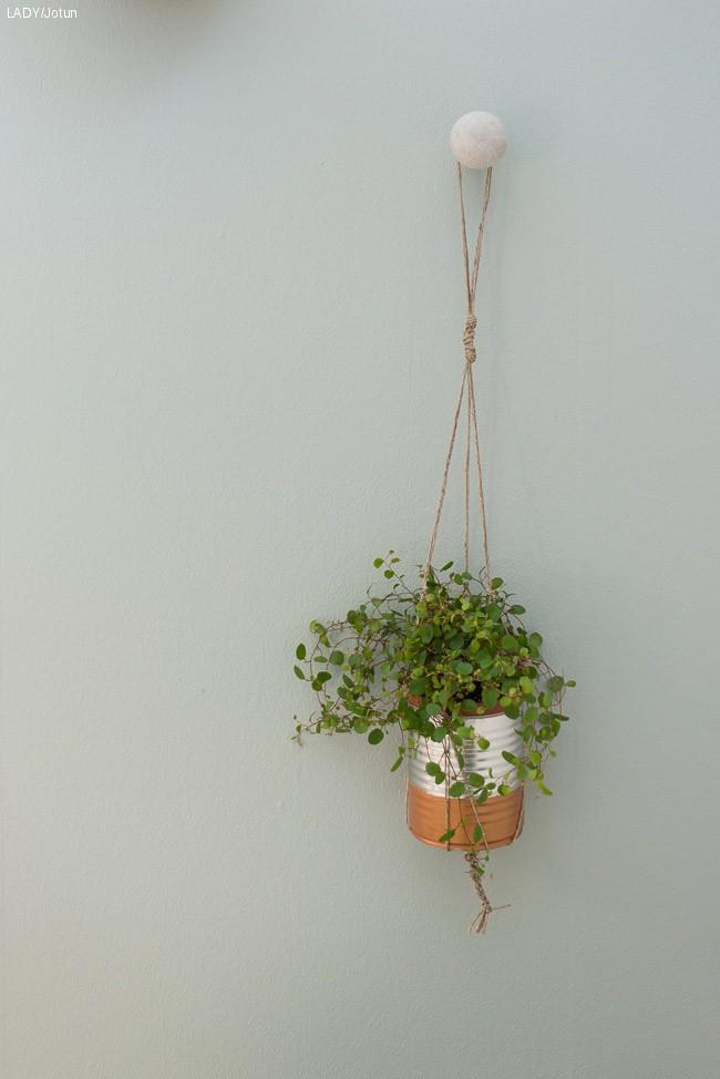 De hotteste plantetrendene