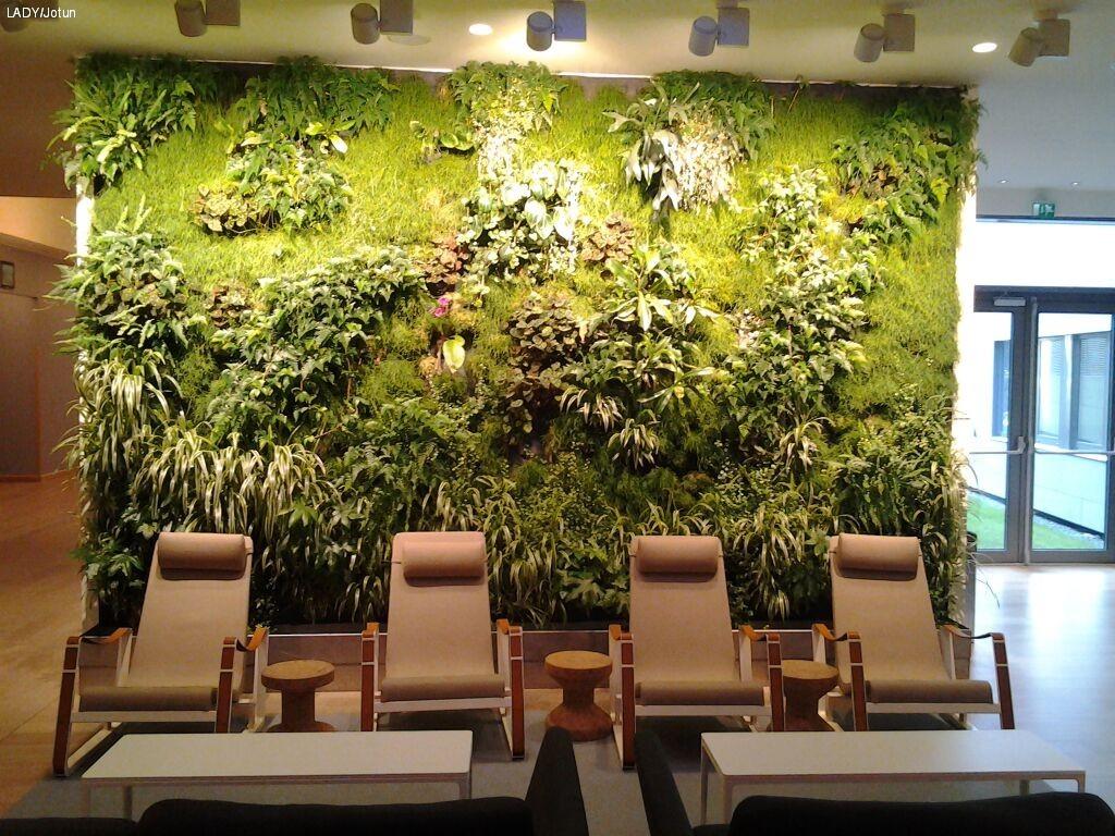 Innred med planter! - LADY Inspirasjonsblogg